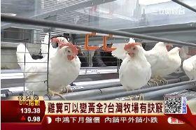 雞糞變發電1800