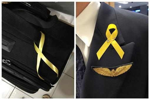 黃絲帶,華航,抗議, (臉書截圖)