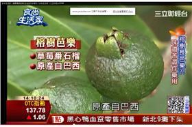 食尚玩家/三立財經台CH88