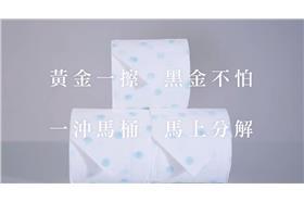國民黨衛生紙(圖/翻攝自Youtube)