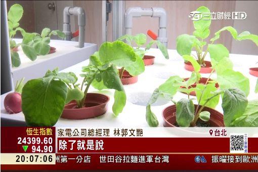 老牌家電也賣蔬菜! 五星級飯店都搶訂