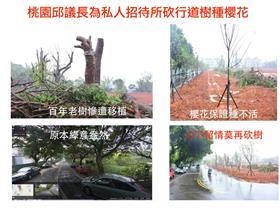 桃議長砍路樹-護樹盟臉書