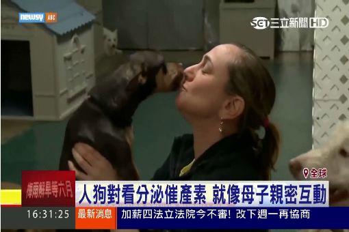 """日最新研究揭祕 """"毛小孩""""等同真小孩"""