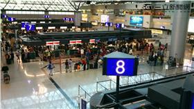 桃園機場航空公司報到櫃台(翁堃泰攝影)