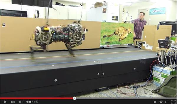 機器獵豹翻攝youtubehttps://www.youtube.com/watch?v=_luhn7TLfWU