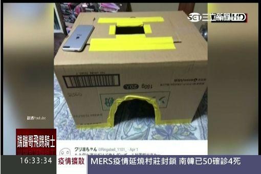 """獨占包場感! 日網友迷""""紙箱電影院"""""""