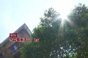 亞萍狗熱死1800