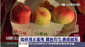 愛上水蜜桃19081112