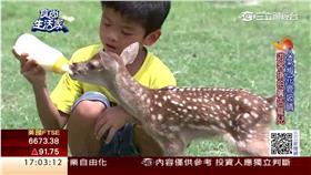 鹿世界 翻攝食尚生活家