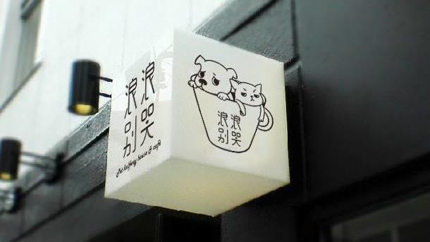 喝咖啡也能領養貓狗?流浪動物中途咖啡館今開幕   寵物