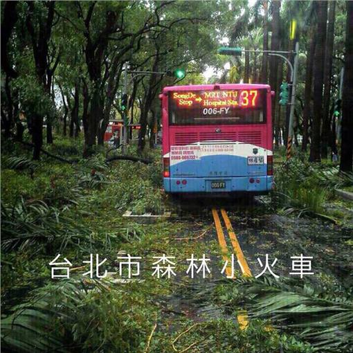 台北市-森林小火車-https://www.facebook.com/photo.php?fbid=10207128520676121&set=a.2880673260663.2150240.1375002836&type=1&theater