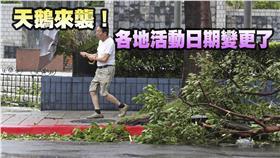 颱風活動變更(圖/路透社/達志影像)三立新聞網製圖
