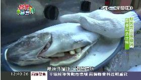 (美食)原民鹽烤魚(九月底前勿刪)