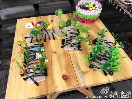 頭上長草髮夾翻攝微博http://tw.weibo.com/2406160022/3877875318939043