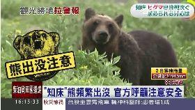d北海熊出沒1600