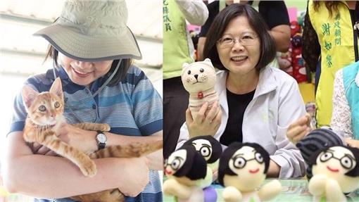蔡英文,貓,蔡阿才,蔡想想(合成圖/翻攝自蔡英文臉書)