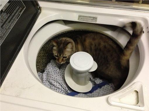 洗衣機-flickr-Luke Jones-https://www.flickr.com/photos/befuddledsenses/8394158432/