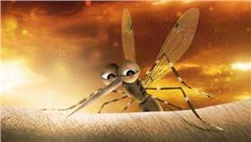 疾管署防治登革熱海報.埃及斑蚊.白線斑蚊(圖/翻攝自1922防疫達人)