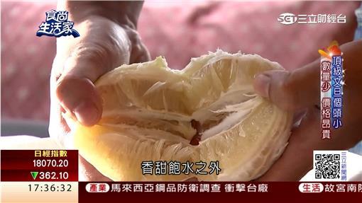 翻攝食尚生活家柚子