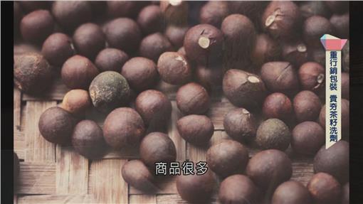 茶籽油文創.1