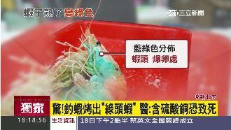 綠頭蝦別亂吃!醫:含硫酸銅恐致死