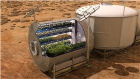 火星種植蔬菜/翻攝自GIZMODO