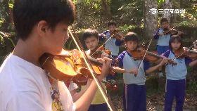 原生提琴夢1800