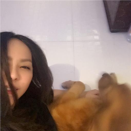 張惠妹,臉書