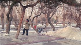 冬天,下雪 ▲圖/攝影者睿 薛, flickr CC License