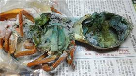 螃蟹(圖/《我們的島》臉書粉絲團)