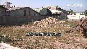 飛彈大違建g1800