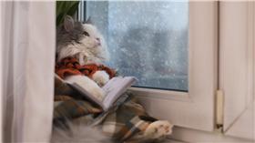 下雨、鋒面、雨天、天氣、寒流、低溫、冷氣團-blue(Shutterstock/達志影像)