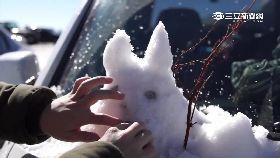 坪林也下雪1200