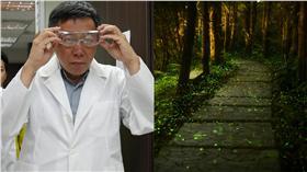 柯文哲,柯P,螢火蟲▲合成圖/台北市政府提供、達志影像