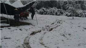 拉拉山下雪/高靜瑤提供