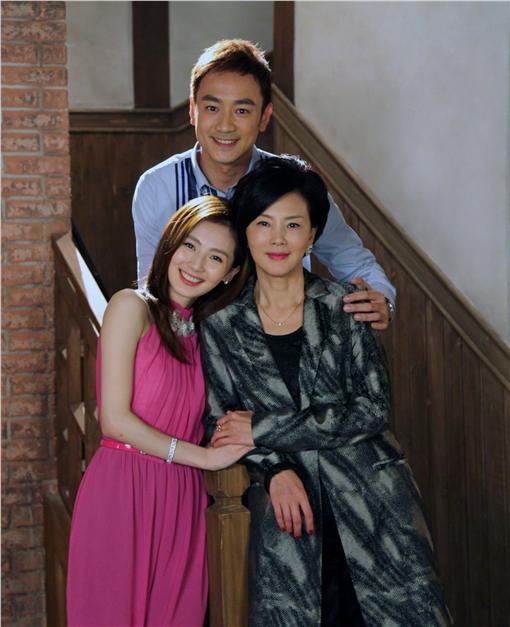 因為愛情有奇蹟,外遇,失憶,婆媳問題,徐貴櫻,林佑威