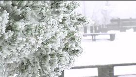追雪全紀錄1800