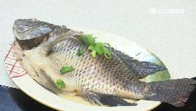 小英總統魚1800