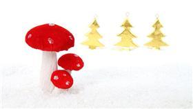 蘑菇-哇潮