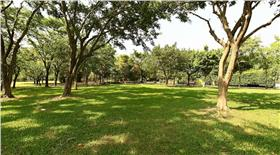 大安森林公園 圖/翻攝自官網
