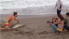 鯊魚擱淺先拍照/DAILYMAIL