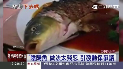 """陸魚""""鮮""""過頭! 魚身被炸熟.魚頭還能動"""