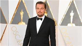 李奧納多、Leonardo DiCaprio、第88屆奧斯卡金像獎完整得獎名單、Oscar Award、奧斯卡/達志影像/美聯社