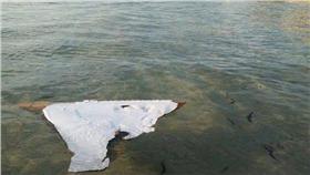 馬航MH370殘骸 (圖/翻攝自CNN)