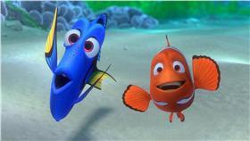 電影,海底總動員,魚,多莉,尼莫,預告,動物.動保,小丑魚,海洋(海底總動員粉絲團)