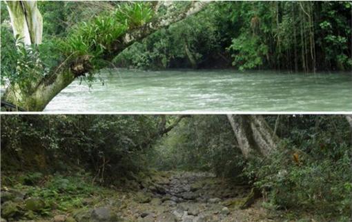 河床,河水,消失,裂縫▲圖/翻攝自Twitter