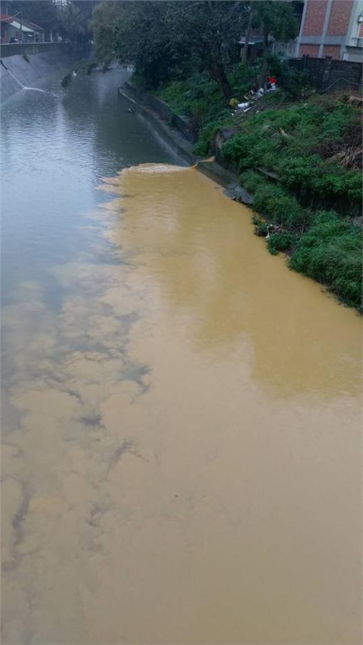 爆料公社,河川,汙染,大便,排泄物▲圖/翻攝自爆料公社臉書