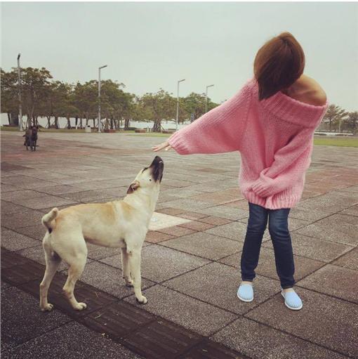 安苡愛-小愛/臉書