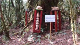 林管處、動物、雕像、宗教器物(圖/翻攝自台東林區管理處)16:9 http://taitung.forest.gov.tw/ct.asp?xItem=77875&ctNode=2323&mp=350