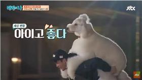 徐仁國,貴賓犬,JTBC Entertainment 官方youtube